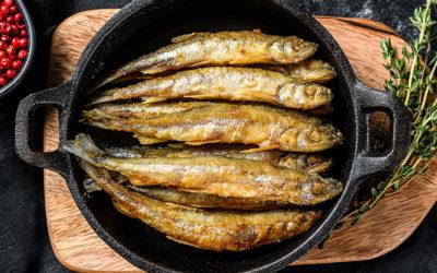 Frittura di alici: i segreti dello chef Campisi per un antipasto doc